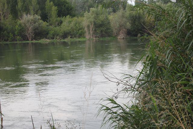 Ebro - starke Strömung, also nix für Emmas Schwimmgelüste