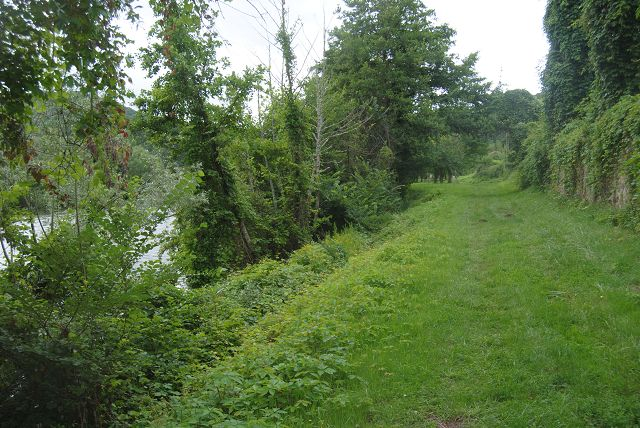 Naturweg entlang des Flusses
