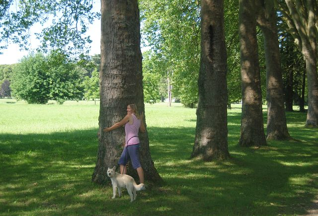 k-10_Marys Versuch Baum zu umarmen