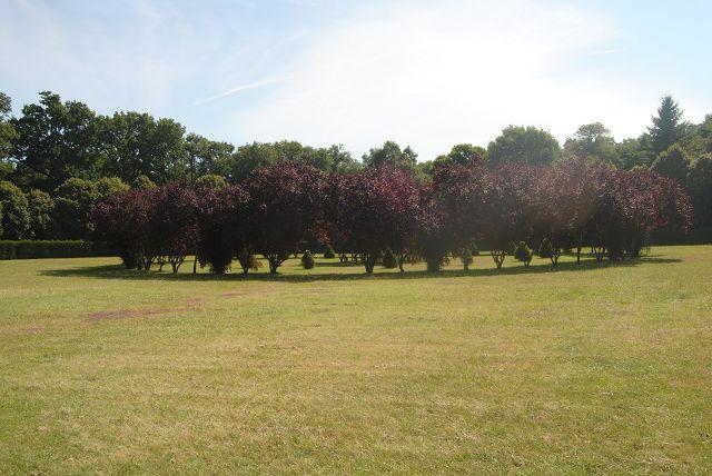 k-13_Schlosspark9
