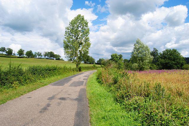 k-66_Spazierweg vom Campingplatz