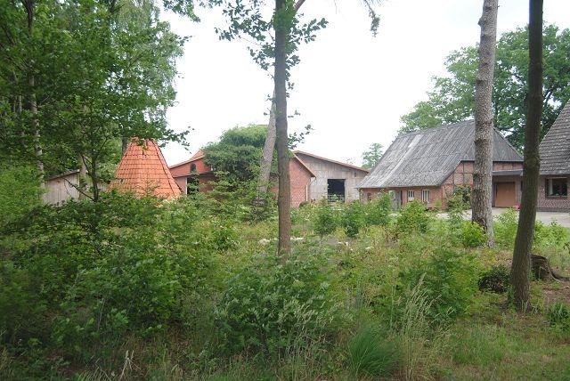 k-14_Lüneburger Heide